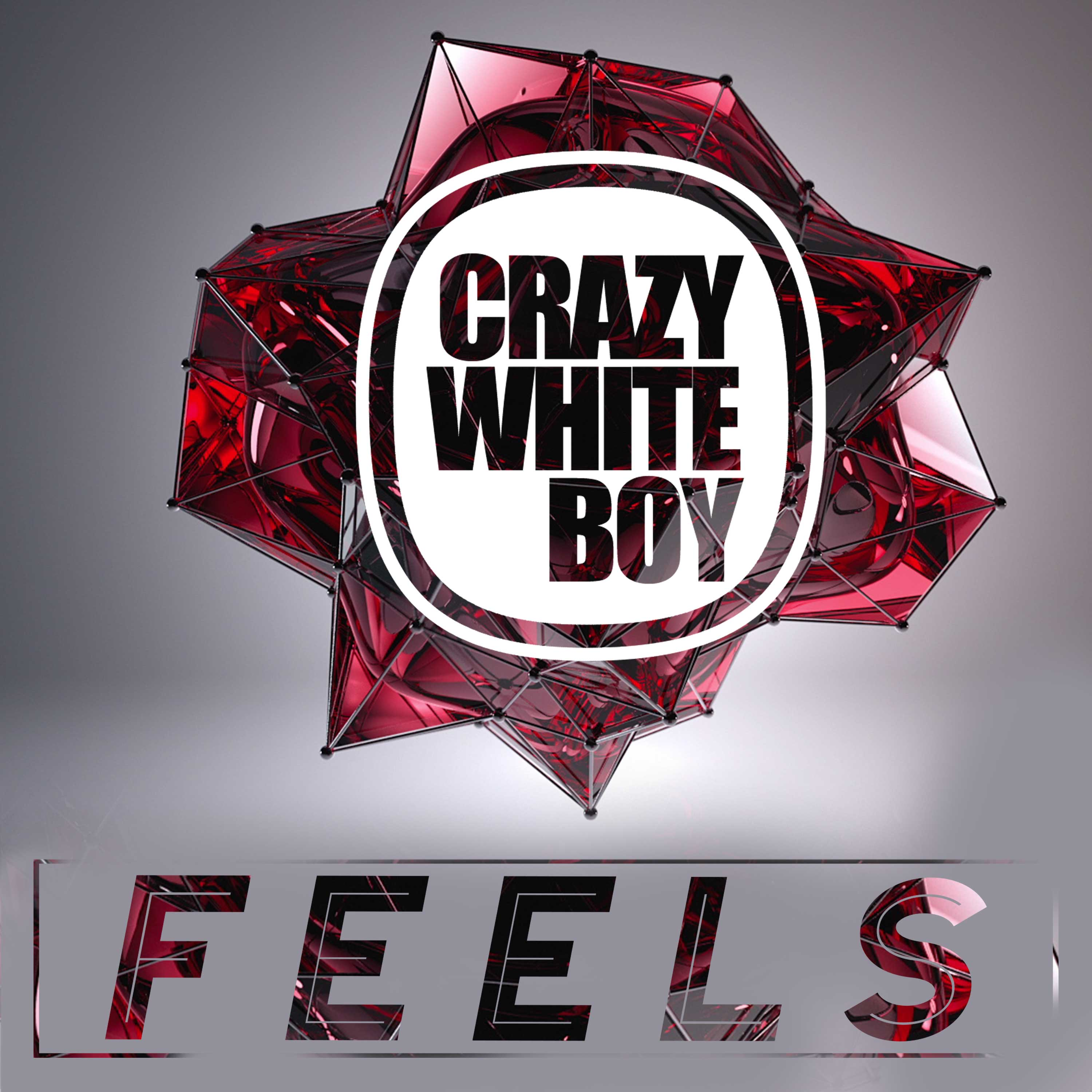Crazy White Boy Releases Feels